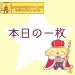 ポムポムプリン☆本日の一枚4/2(日)