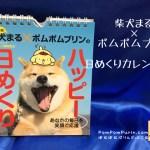 ポムポムプリン☆コラボ☆柴犬まる×ポムポムプリン日めくりカレンダー