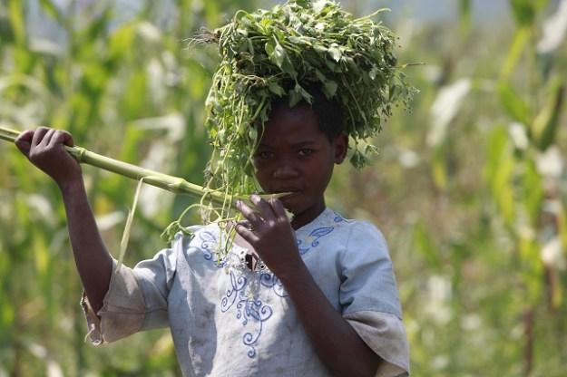 travail des enfants en RDC