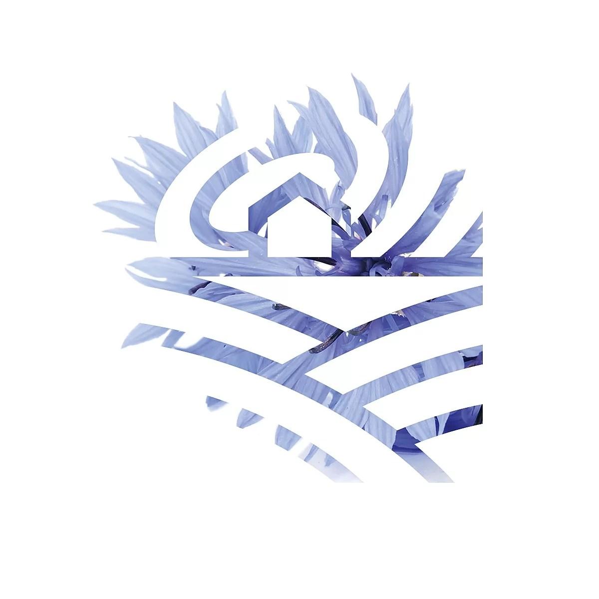 Logo agroturystyka Pod Modrym Aniołem