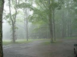 Rainy and Foggy Day