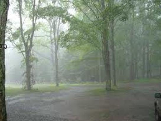 Rainy Day fog