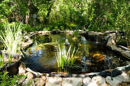 New Pond 2 5-3-2014