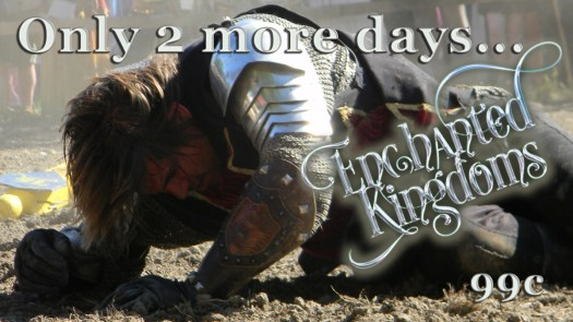 With the final countdown of only 2 days to go—a knight in shining armor is using all his strength to crawl toward his goal of gaining a copy of Enchanted Kingdoms before it's too late.