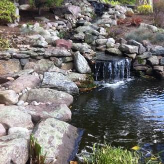 oldstone pond