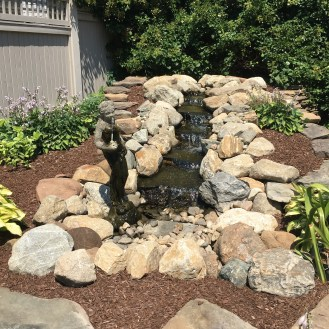 pondless backyard