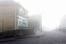 Another foggy morning in the hills outside of Central Bath. © Violet Acevedo