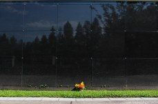 The reflective memorial for the unclaimed and missing victims of Hurricane Katrina. © Violet Acevedo