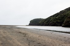 Approaching the ocean on Te Henga (Bethells Beach). © Violet Acevedo