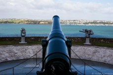 Old canons still protect the bay at North Head. © Violet Acevedo