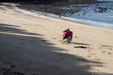 Playing in the sand along the Windsor Reserve. © Violet Acevedo