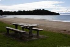 The beach at Huruhi Bay on Waiheke. © Violet Acevedo