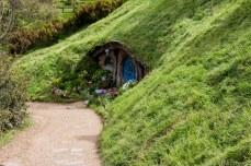 More miniature doors to nowhere. © Violet Acevedo