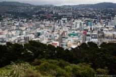 The city reaches into the distant hills. © Violet Acevedo