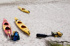 The kayaks patiently waiting on the beach. © Violet Acevedo