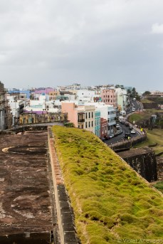 The colors of Old San Juan stands out amongst the gray of the fort's stone. © Violet Acevedo