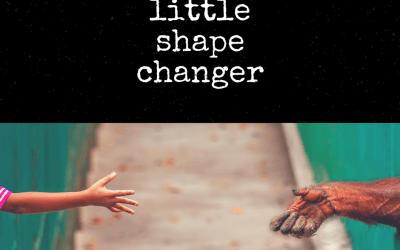 Little Shape Changer