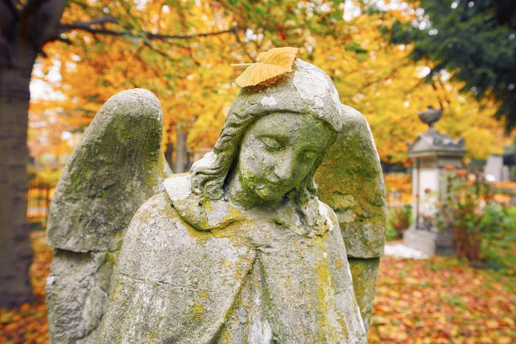 Angels POndeirngs Magazine
