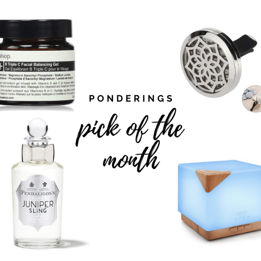 Ponderings pick of the month shopping guide