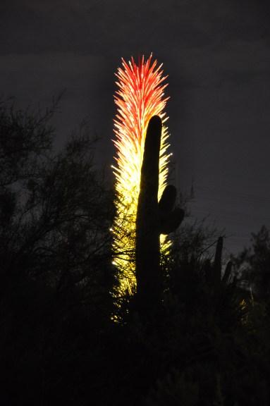 Chihuly, Phoenix, Arizona