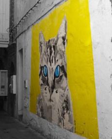 Morocco cat street art