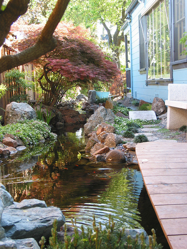 Water Garden Builder Santa Cruz Monterey San Jose San