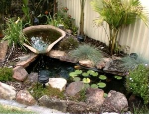 100, 150, 200 and 300 Gallon Small Koi Pond The Ultimate Guide