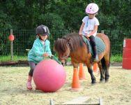 Pony Games au Poiré sur vie