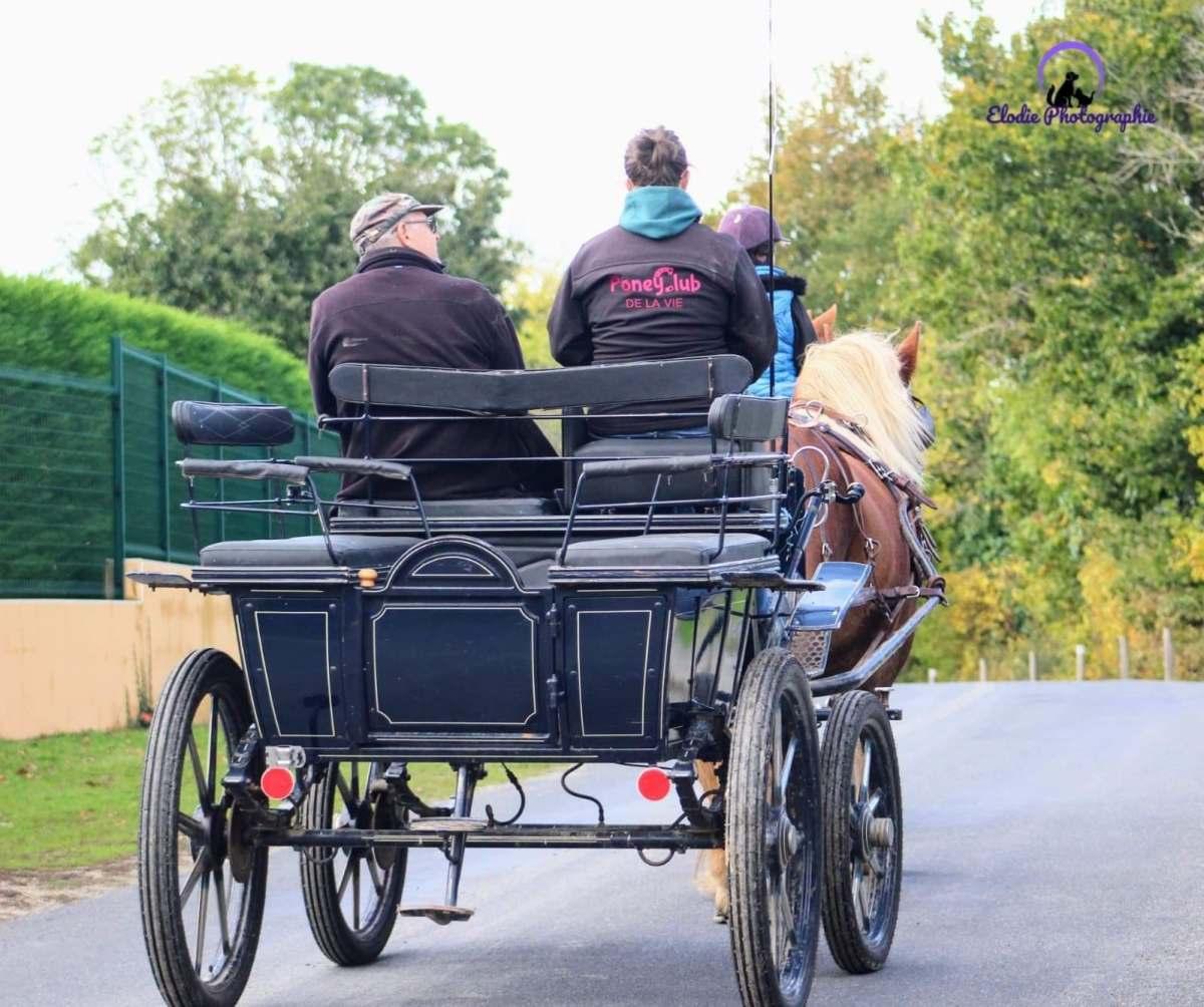 balade à cheval en Vendée près de La Roche sur Yon
