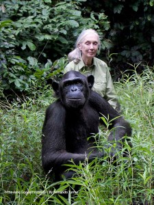 Únete contra el cambio climático | LOS40 | Jane Goodall y Rebeca | Foto The Jane Goodall Institute by Fernando Turmo
