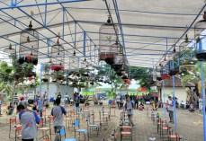 Antusias Kontes Burung Berkicau Ponjong Enterprises