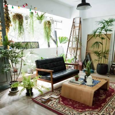 Tree mew House 樹米攝影棚 Deco&Space