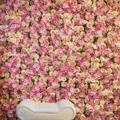 Co蜜玫瑰園攝影工作室