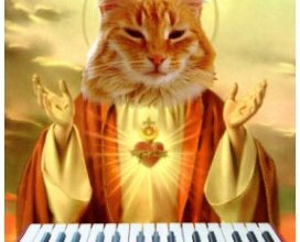 <!--:pt-->Keyboard Cat: Reencarnado<!--:--><!--:en-->Keyboard Cat: Reencarnado<!--:--><!--:es-->Keyboard Cat: Reencarnado<!--:-->