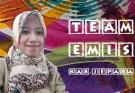 team emis Kabupaten