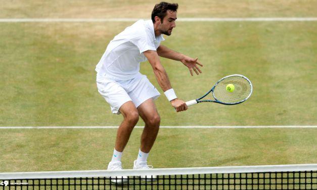 Ponturi Tenis Muller – Cilic – Londra (GBR)