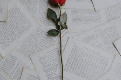 Los mejores libros actuales para regalar el Día del Libro o Sant Jordi