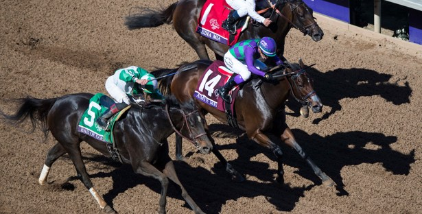 Breeders Cup Filly And Mare Sprint Breakdown The Pony