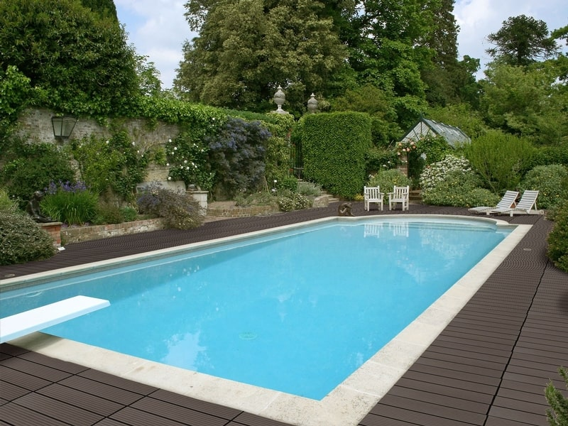How Trees Impact In-Ground Pool Construction