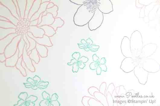 Stampin' Up! Demonstrator Pootles - A Dozen Thoughts of Forever Florals Colour Detail