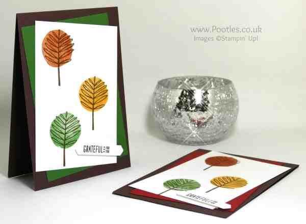Stampin' Up! Demonstrator Pootles - Totally Trees Thank You Cards