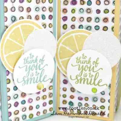 Burts Bees Vitamin E Oil Box using Share What You Love