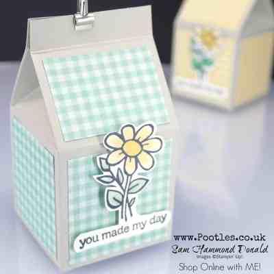 Hoot Hoot Hooray, it's a Mini Milk Carton!