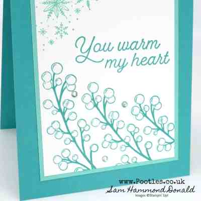 Frosted Foliage warms my heart – ideal masculine card