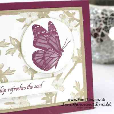 Soft Pretty Butterfly Wishes in Cherry Cobbler and Crumb Cake