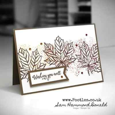 An Autumnal Card using Gather Together and Regals Ink