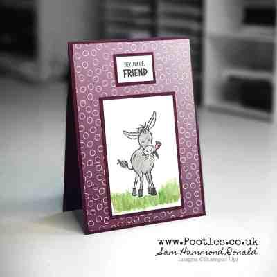 Sale a Bration Sneak Peek. Oh So Ombre Darling Donkey!