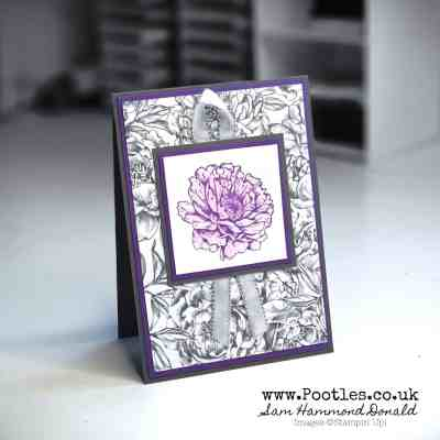 Softly Blended Ink on a Peony Floral Card