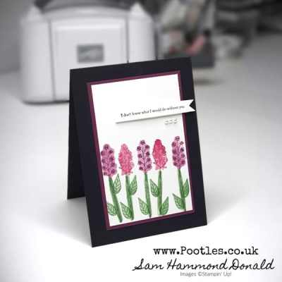 Pootlers Team Blog Hop – Soft Card using Back to Back Blooms and Heal Your Heart