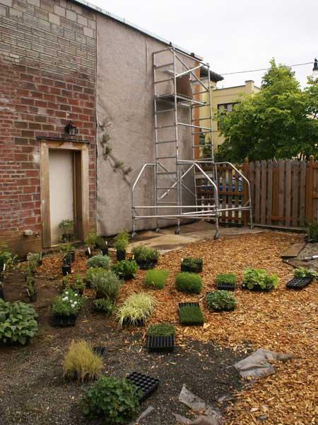 vertical garden institute How to Start a Vertical Garden